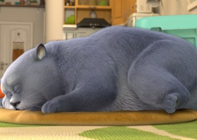 cats_13