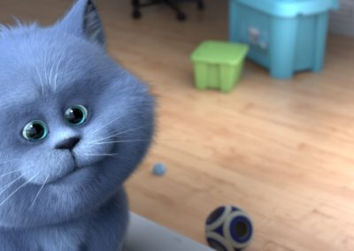 cats_1_800